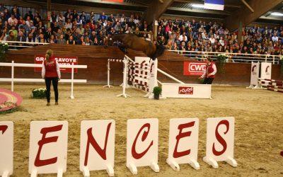 Comment préparer un cheval pour les sélections Fences ? – Selon Arnaud Evain, Président de l'Agence Fences