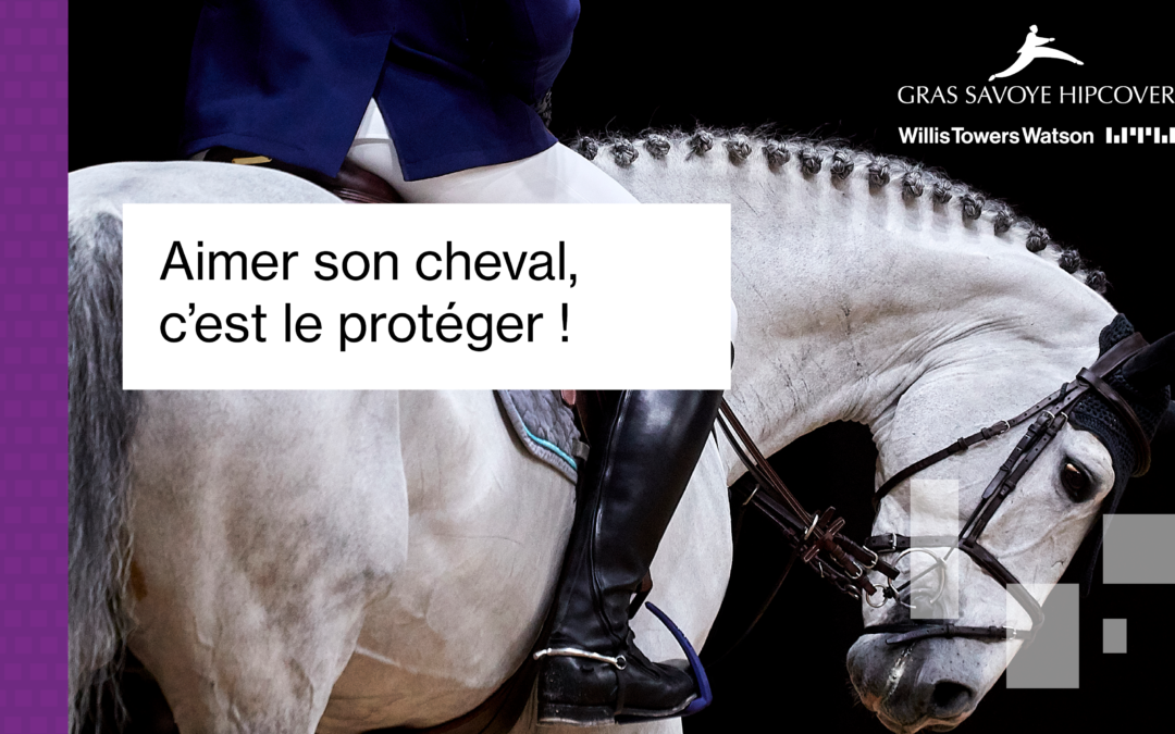 Gras Savoye : Aimer son cheval, c'est le protéger !